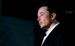 Hội đồng quản trị của Tesla yêu cầu Elon Musk dừng tweet