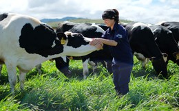 Thị trường sữa đã bão hòa, Vinamilk còn đất nào để tăng trưởng?