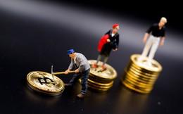 """Triệu phú Bitcoin Hàn Quốc """"ăn quả lừa"""", nhận về 2,3 triệu USD tiền giả làm bằng... photoshop"""
