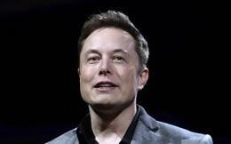 Từ bức thư của tổng biên tập Huffington Post gửi Elon Musk: Làm việc để sống hay sống để làm việc?