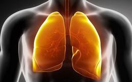 Hút thuốc khiến phổi bị 'nhuộm' đen và sinh bệnh: Cách thanh lọc phổi bạn nên áp dụng sớm