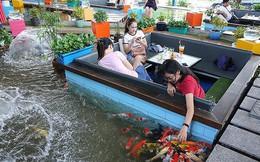 Trải nghiệm uống cà phê giữa hồ cá Koi tiền tỉ ở Sài Gòn