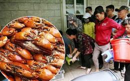 """Cận cảnh người Sài Gòn chờ hàng giờ đồng hồ, tranh mua """"mâm cua dì Ba"""" chỉ bán 10 phút là hết sạch"""