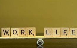 Một công ty New Zealand chỉ cho nhân viên làm việc 4 ngày mỗi tuần bởi lý do bất ngờ sau
