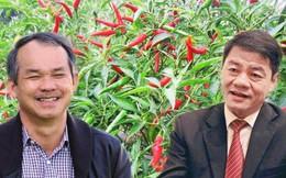 """Tỷ phú Trần Bá Dương bơm gần 20.000 tỷ đồng giúp bầu Đức thoát khỏi mọi """"cơn bĩ cực"""": Cơ cấu lại nợ, vực dậy nông nghiệp, hoàn thành dự án BĐS ở Myanmar"""