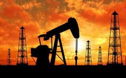 Lo ngại chiến tranh thương mại gia tăng, dầu giảm giá