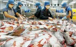 Hùng Vương hưởng thuế 0% xuất cá tra vào Mỹ, thuế chống bán phá giá với tôm Việt Nam cũng giảm mạnh