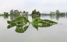 Hà Nội dốc toàn lực ứng phó với siêu bão Mangkhut