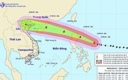 Lên kịch bản chi tiết ứng phó với siêu bão Mangkhut