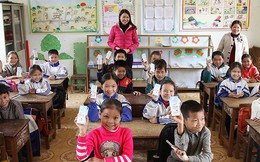 Chương trình sữa học đường: Băn khoăn chất lượng, giá cả  Giáo dục