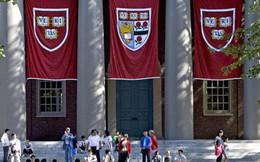 Đại học Harvard huy động được 9,6 tỷ USD trong một chiến dịch