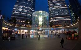 Bạn sẽ thực sự choáng khi biết doanh thu của mỗi cửa hàng Apple trên thế giới