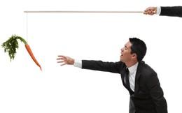 Sếp muốn thưởng phạt nhân viên hiệu quả đều cần biết nguyên lý kinh tế này