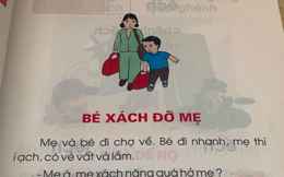 """Chuyên gia pháp lý người Nhật nói về bài đọc """"Bé xách đỡ mẹ"""" gây tranh cãi: Đừng bắt trẻ thơ nhìn vạn vật bằng con mắt của người lớn"""