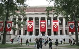 3 điều đại học Harvard danh tiếng đang 'nói dối' mà không phải ai cũng biết
