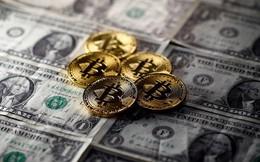 Mặt tối 'chơi tiền ảo': 1/5 nhà đầu tư đi vay tiền để 'đánh Bitcoin' và cứ 4 người thì có 1 người không thể trả nổi nợ!