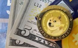 Lấy cảm hứng từ... một chú chó, đồng tiền số này đã tăng giá 800% và đạt vốn hoá hơn 2 tỷ USD