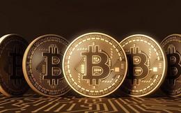 Nhà đầu tư kỳ cựu phố Wall lo Bitcoin sẽ sụt giảm 90% giá trị
