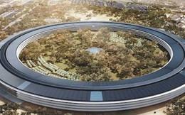"""Tại sao các """"ông lớn"""" công nghệ Mỹ đồng loạt xây trụ sở mới?"""