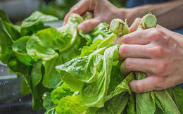4 kiểu chế biến dễ gây mất chất dinh dưỡng: Nếu bạn mắc sai lầm này thì nên lưu ý sớm!