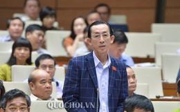 Chuyên gia nói về lý do GDP Việt Nam đang thấp nhưng các nước vẫn muốn mời tham gia CPTPP