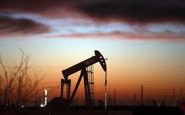 Sụt giảm không ngừng, giá dầu có chuỗi ngày giảm giá dài nhất trong 34 năm