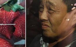 Thủ phạm khiến nông nghiệp Úc điêu đứng là một phụ nữ gốc Việt?