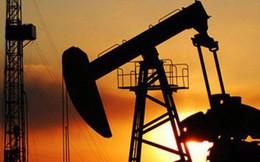 Giá dầu lao dốc có dẫn tới một cuộc khủng hoảng kinh tế lớn?