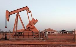 Giá dầu sụt 7%, các đại gia dầu mỏ chuẩn bị giảm sản lượng vào tuần tới?