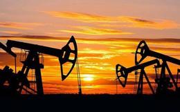 Kinh tế thế giới ra sao khi giá dầu giảm còn 50 USD/thùng?