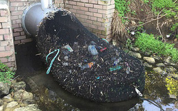 Cách xử lý rác thải đơn giản của Úc bỗng nổi rần rần trên Internet vì vừa hiệu quả vừa tiết kiệm