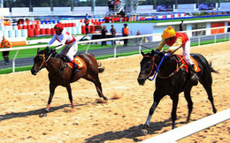 Ông Dũng lò vôi: Xây trường đua ngựa 100 triệu đô vì chiều ý vợ
