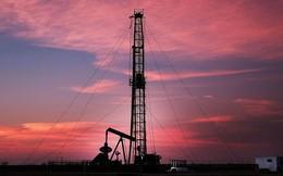 Giá dầu tăng vọt dù Fed nâng lãi suất đồng USD