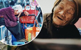 Ghé thăm cụ bà lưng còng trong bức ảnh gục đầu bên gánh hàng rong giữa ngã tư Hà Nội khiến nhiều người xót xa