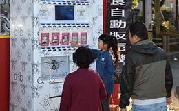 Dựng máy bán 'snack' côn trùng ăn liền, ông chủ người Nhật thu gần 5.000 USD/tháng