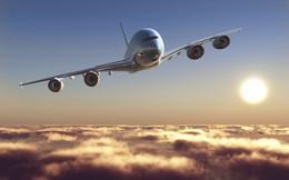 Sau FLC làm BamBoo Airways, đến lượt công ty lữ hành Vietravel tuyên bố sẽ mở hãng hàng không thứ 6 cho Việt Nam?
