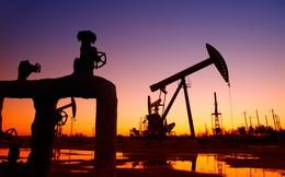 Những quốc gia sản xuất được hàng trăm nghìn thùng dầu mỗi ngày ít người biết tới