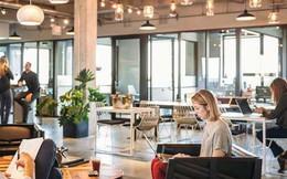 Tp.HCM: Tỉ lệ lấp đầy trung bình của không gian làm việc chung đạt xấp xỉ 80%