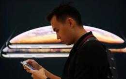 Apple yêu cầu các nhà cung ứng cắt giảm 10% kế hoạch sản xuất iPhone mới