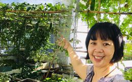 Sài Gòn: Sân thượng 20m² trồng đủ các loại rau của bà mẹ quyết nghỉ việc để dành nhiều thời gian hơn cho bản thân và gia đình