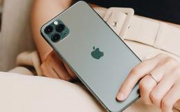 Đã có hơn 13.000 đơn đặt trước iPhone 11, 11 Pro, 11 Pro Max tại FPT Shop