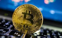 Giá Bitcoin bất ngờ tăng gần 30%, thoát đáy 5 tháng