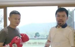 Hậu nghỉ hưu, tỷ phú 'già gân' Jack Ma tập tành đấm bốc, lập team thách thức tay đấm huyền thoại người Mỹ, Floyd Mayweather