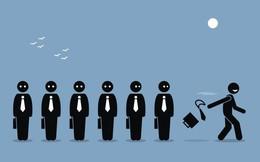 Khảo sát Anphabe: Tỷ lệ nghỉ việc có thể lên 24% trong năm 2019 và có tới 50% nhân sự không trung thành và kém nỗ lực