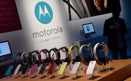 Vì sao những công ty tốt nhất như Motorola qua thời gian trở thành kẻ bại trận?