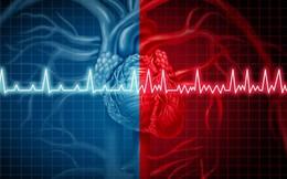 Trí tuệ nhân tạo giờ đây có thể phát hiện ra suy tim chỉ từ một nhịp tim với độ chính xác 100%