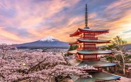 """Giám đốc Quỹ giao lưu Nhật Bản: Việt Nam là """"siêu cường quốc"""" dạy và học tiếng Nhật, phát triển nhanh nhất thế giới"""