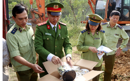 Tiêu hủy hơn 8,5 tấn bánh kẹo, đồ chơi trị giá gần 1 tỉ đồng tại Lào Cai