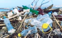 """Đau đầu với hơn 2 triệu tấn rác thải nhựa, Việt Nam học hỏi được gì từ chương trình """"lấy mỡ nó rán nó"""" của Singapore: Mỗi năm giảm 46.000 tấn rác thải, tiết kiệm 130 triệu USD?"""