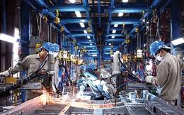 HSBC: Doanh nghiệp Việt đang rất tự tin về tương lai, 100% tin doanh số bán sẽ tăng trong 5 năm tới